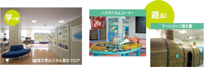 2Fで見て学ぶ展示フロア ハマチパズル マーレリッコクイズコーナー